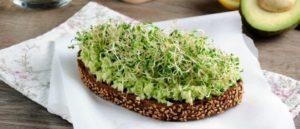Авокадо тост с микрозеленью
