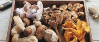 Можно ли грибы на кето диете